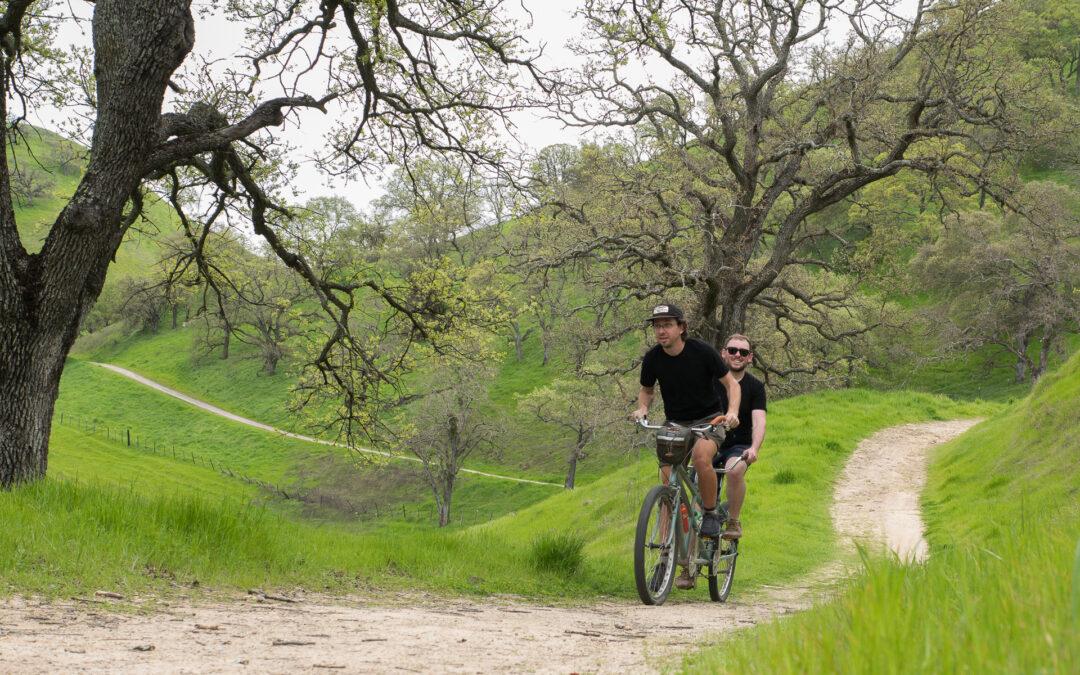 Welcome to Bike Insights